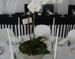 catering-weddings-019